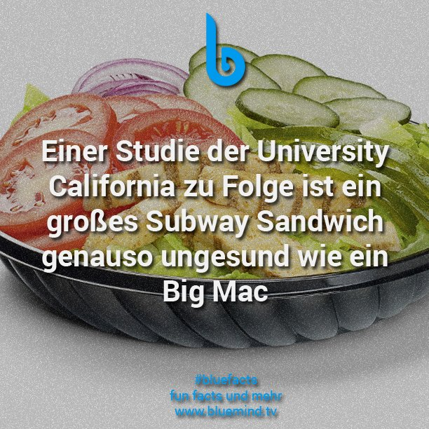 Subway Fakt 8