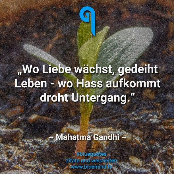 quote 184