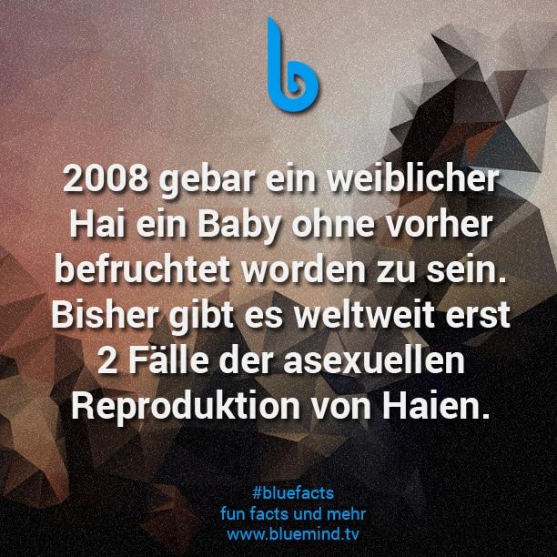 Fact 675