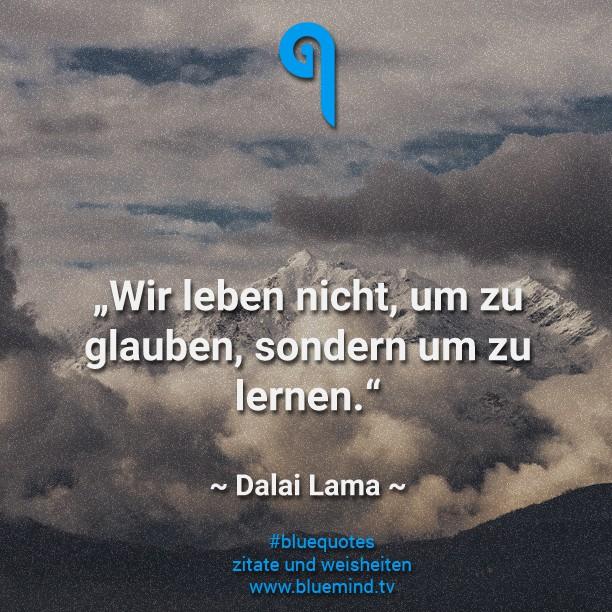 dalai lama - seine besten zitate - bluemind.tv