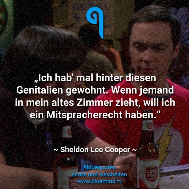 The Big Bang Theory Zitate