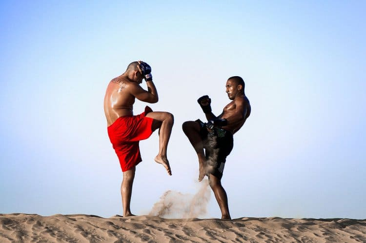 Spiele-Apps, mixed martial arts